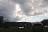 in ritiro (zecaruso) Tags: italy football italia soccer trento caruso palermo trentino ciccio levicoterme allenamento rosanero palermocalcio zecaruso cicciocaruso