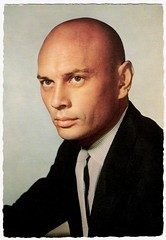 Yul Brynner (after) (Truus, Bob & Jan too!) Tags: cinema film vintage movie star globe kino sam postcard bald picture cine screen hollywood movies actor postal postale cartolina carte yulbrynner levin yul postkarte filmstar brynner ansichtkaart filmster postkaart samlevin tarjet edug samlvin