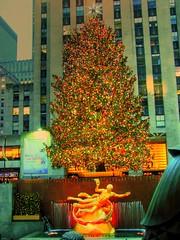Christmas Tree at Rockefeller Center - HDR (micronirav) Tags: christmas nyc newyorkcity ny tree manhattan iceskating rockefellercenter midtown rockefeller 2009 hdr prometheus