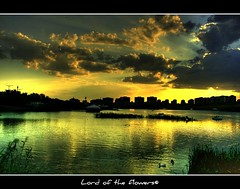 Gksu Park - ANKARA (LORD OF THE FLOWERS) Tags: sunset sky lake clouds reflections 1855mm reflexions ankara cubism canonrebelxti platinumphoto anawesomeshot theunforgettablepictures gksupark flickrlovers vosplusbellesphotos artofimages bestcaptureaoi