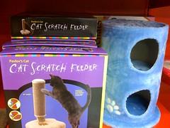 cat scratch posts