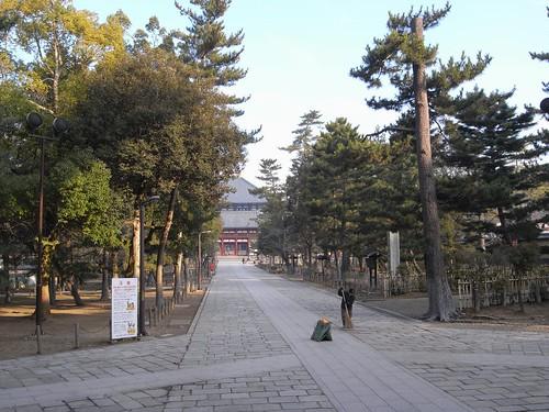 早朝の東大寺(二月堂編)-23