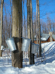 Traditional Buckets