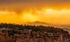 Yellow (Amy Hudechek Photography) Tags: sunset rain yellow colorado getty gettyimages coloradonationalmonument happyphotographer amyhudechek