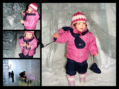 Lily à l'hotel de glace