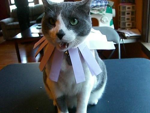 Lola's Birthday!