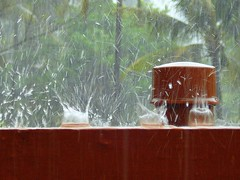 Splash...Water splash...Rainwater splash.... (ArunaR) Tags: water rain sony kerala splash aruna watersplash irinjalakuda raindropskeralaindia