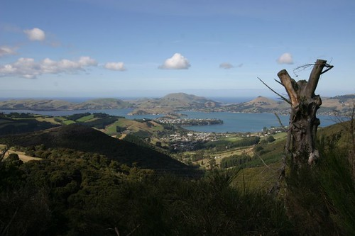 Otago Peninsula in the background. N of Dunedin, NZ