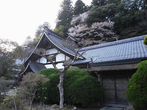 室生寺(本坊)-32