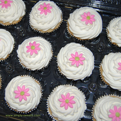 pink daisy cupcakes boxed