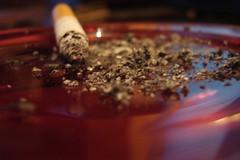cigarrete by luisgonzalez_88