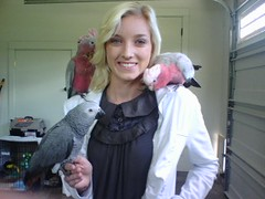 Jamieleigh with 2 girls and 1 boy (Dave Womach) Tags: bird parrot africangrey 7monthold rosebreastedcockatoo jamieleigh babies3yearold