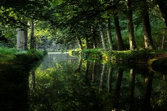 Good morning! (Plutone (NL)) Tags: trees light reflection green water dark reflecting reflexions mywinners abigfave