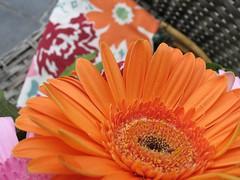 sac à fleur 004
