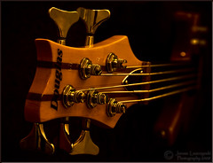 5 String Bass (janusz l) Tags: desktop wallpaper bravo bass guitar jazz musical instruments soe onblack fretless janusz 4121 leszczynski abigfave platinumphoto friendlychallenges alwaysexc paulleszczynski 5string thejazzthree