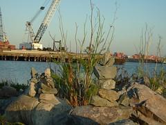 DSCF1328 (tincanbanjo) Tags: cairns rockpiles