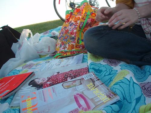 picnic reading material