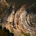 Aiguilles de Tortisse / Patrick Boit photographe Valence Drôme