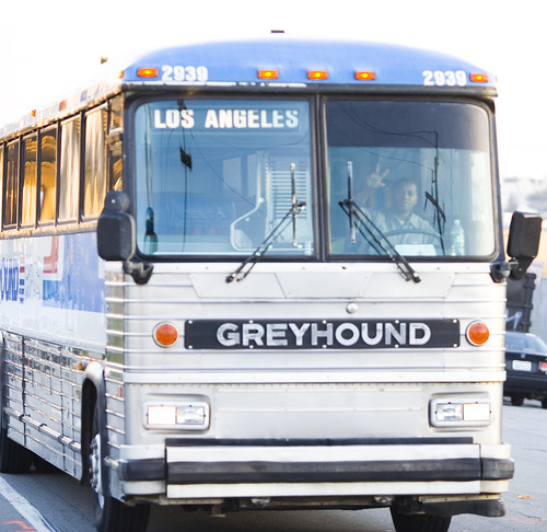 Greyhound Vs Megabus ALL AMAZING BUS: Best ...