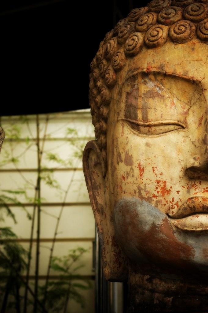 Buddha Head of Indochime 2746852144_1b55b8c2dc_b