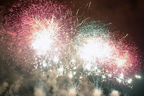 Edogawa-Fireworks2008-3577