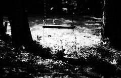 Holding On ({peace&love}) Tags: summer bw plants white black tree nature grass set shadows dof bokeh swing holdingon peacelove pinkparis1233