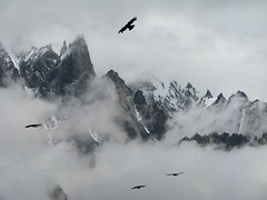Lobsang Spire, Baltoro Glacier, Pakistan. (Marc_P98) Tags: pakistan cloud mist mountain snow bird ice rock trek glacier spire concordia k2 karakoram lobsang baltoro urdukas