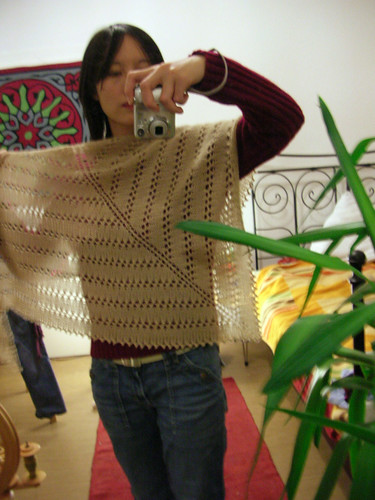 One-skein shawl with picot edge