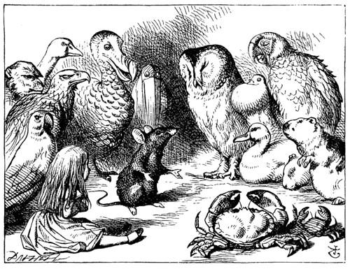D- El raton le cuenta un cuento a Alicia-Edición 1866 –Tenniel