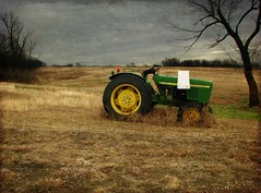 country livin' (with a southern-bell accent, that's right)... ({kari elaine}) Tags: travel sky cloud brown tractor color tree cute green grass landscape living town dallas amazing focus pretty day texas view dynamic sweet farm country bailey saturation land depth bonham