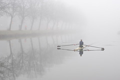 tree row (beeldmark) Tags: city winter mist holland reflection netherlands fog geotagged canal europa europe utrecht nederland rowing kanaal skiff stad roeien merwedekanaal  mistig spiegeling roeiboot tre