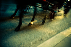 horses and wagon (Fotis ...) Tags: vienna horses motion streets wagon wheels isawitpassing