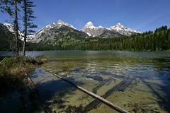 Taggart Lake (Calidris!) Tags: usa wyoming grandtetons teton tetons grandteton wy grandtetonnationalpark taggartlake taggartlaketrail