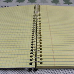 mead CAMBRIDGE Notebook