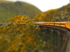 Tiltshift: Dunedin Rail (Dr Stephen Dann) Tags: newzealand mountain train otago tiltshift