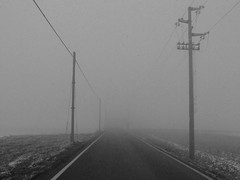 Nebbia in valpadana-A fog project02 (Felson.) Tags: road mist cold fog sadness grey wire strada grigio post pole cables land nothing melancholy pali nebbia brianza freddo malinconia spleen boh tristezza roadtonowhere scighera campi cavi nulla palidellaluce mrmassimovolume songdaquimassimovolume