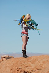 Macaws (Dave Womach) Tags: blue 2 arizona bird up rock outside day all jamie leg parrot az spot landing page camelot hybrid popular shoulder macaw comet throat jinx cuddling freeflying tusa freeflight jamieleigh