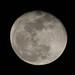 Juan José Benítez dice que en 1969 se encontraron ruinas extraterrestres en la Luna