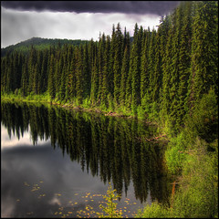 Deep View (ecstaticist) Tags: travel sky cloud lake holiday canada reflection green water leaves pine leaf exposure bc 5 five columbia casio nancy british kootenays greene hdr kootenay lodgepole photomatix exf1