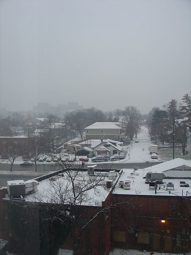 snowy arlington