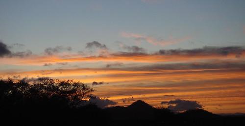 Palo Verde, el amanecer... Feb 2009