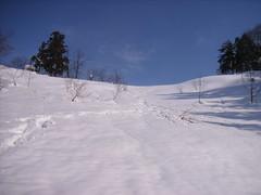 閉鎖されたスキー場を独り占めしてAmieとのんびり