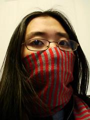 go go gadget scarf!