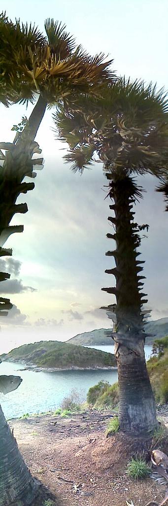 prompthep islands