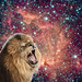 galaxicLion