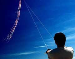 KITE FLYER (gcquinn) Tags: kite green marina flyer san francisco geoff quinn geoffrey presidio beautifulcapture