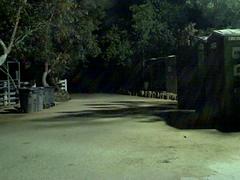 Strange Sound on a Windy Night (Brett A. Fernau) Tags: california wildlife hyena sylmar waystation deadeyebart brettfernau flipvideo
