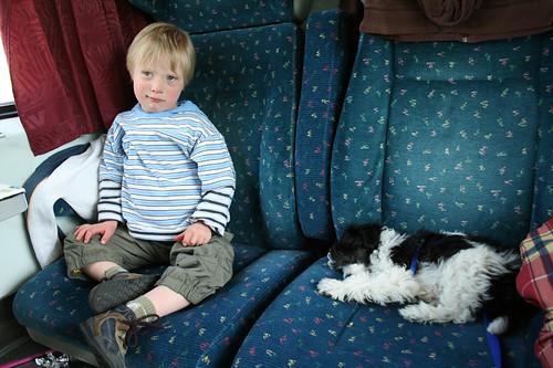 kärnten2008zugfahrthund