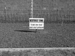 KZ Sachsenhausen Neutral Zone