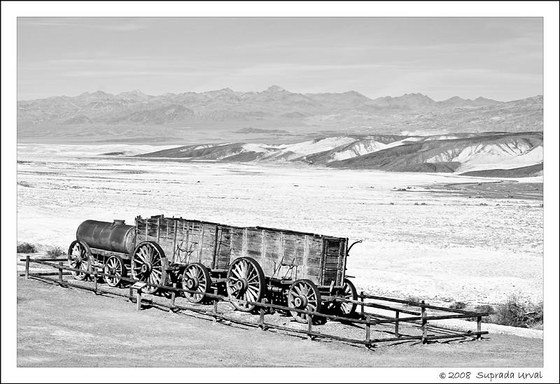 Twenty Mule Train